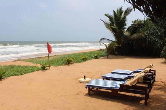 Temple Tree Resort & Spa: Beach side