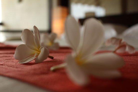 Temple Tree Resort & Spa: Hotel room