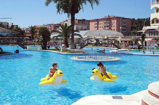 Evenia Olympic Garden: Pool area
