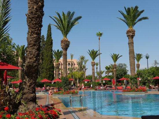 Piscine Picture Of Sofitel Marrakech Lounge And Spa