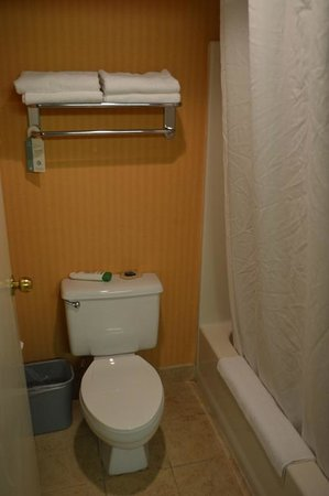 Comfort Inn & Suites East Hartford: The bath was small, but efficient