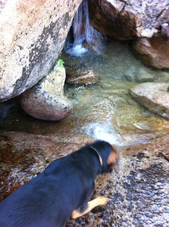 Placerville, Kalifornien: Testing the water