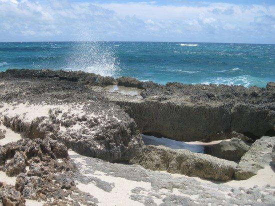Treasure Cay Beach : Lynyard Beach-Atlantic side
