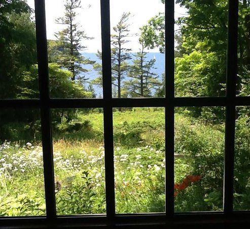 The Clearing: Early summer view from the Lodge
