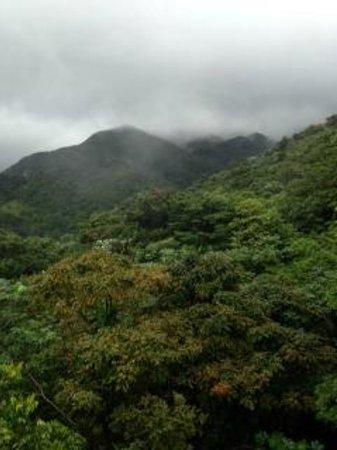 El Yunque Rain Forest: View of El Yunque National Park