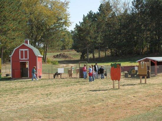 Country Bumpkin Farm Market Fall Fun - Haunted Wisconsin