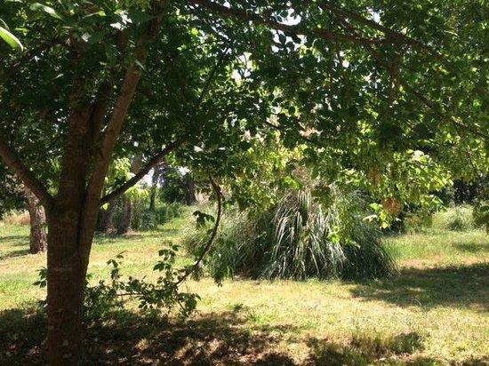 La Vallicella : cour intérieure des locations...