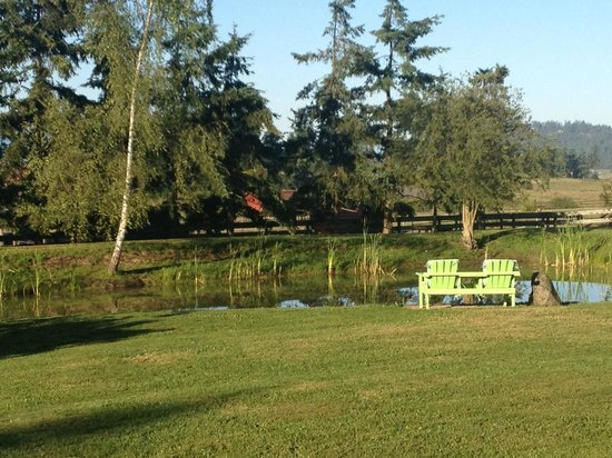 Trumpeter Inn: Bullfrog pond