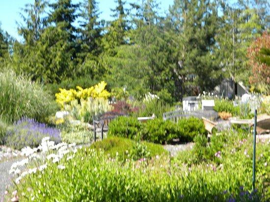 Trumpeter Inn: Garden