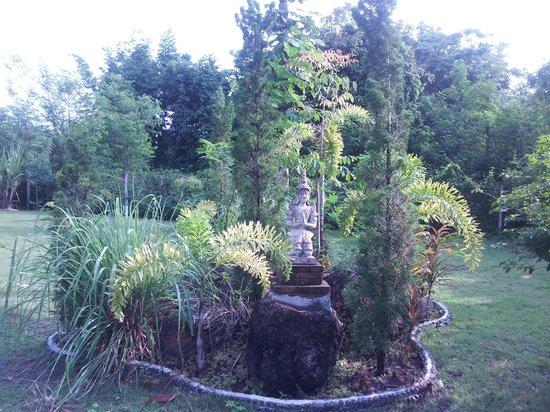 Mai Siam Resort: flora