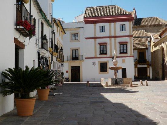 Posada del Potro: Plaza del Potro