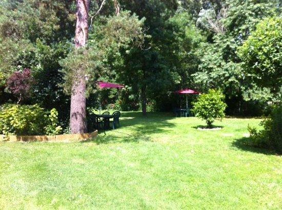 Le Moulin de la Follaine: une partie du jardin