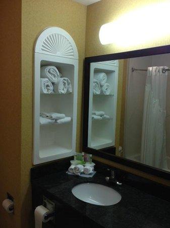 Holiday Inn Express Hotel & Suites Frankfort : Bathroom