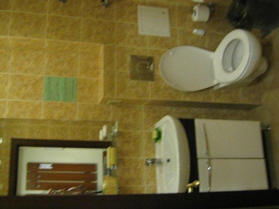 Hotel Maleton: Baño simple