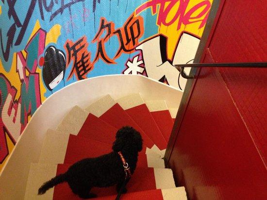 Hotel du Nord : cagnolino contento di essere con i padroni