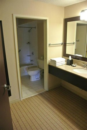 Sheraton San Jose Hotel : Bathroom and separate vanity