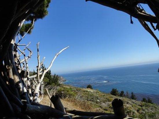 Treebones Resort: View from the nest