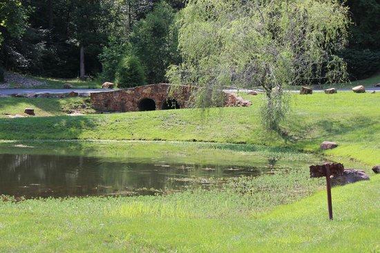 Cedar Falls Cabin Rentals : Cedar Falls Resort