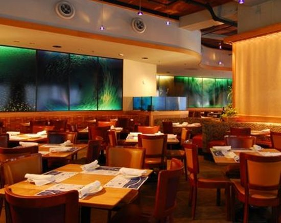 Legal sea foods tripadvisor for Open table 99 park