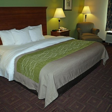 Comfort Inn Asheville Airport: room overview 3