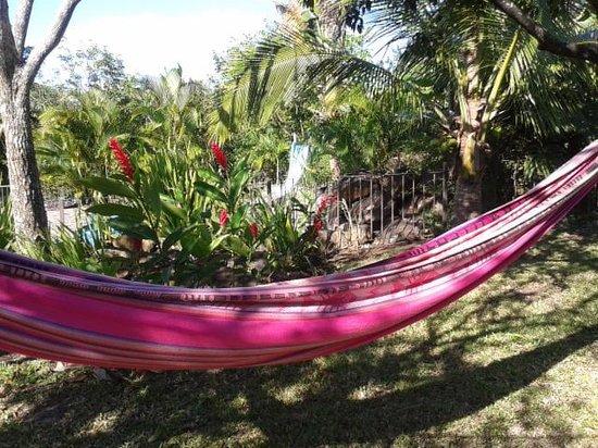 La Garita Bed and Breakfast: hammocks hung for guests.