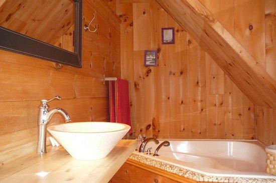 Auberge Couleurs de France: salle de bain chambre