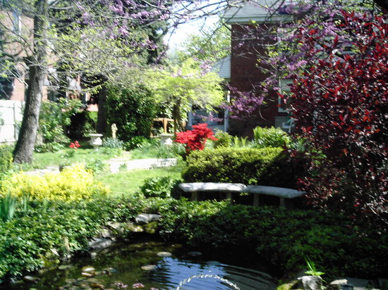 The Barker House Bed and Breakfast : The garden