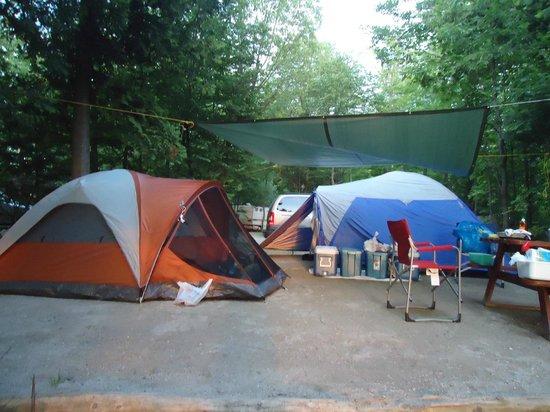 Mindemoya Court Cottages & Campground: our set up