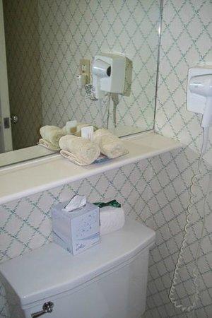 University Inn Washington DC: Baño con buenos productos