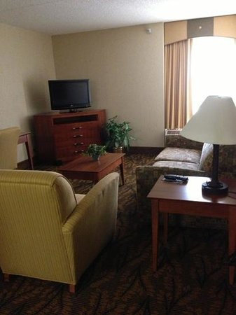 Hampton Inn Boston-Logan Airport: Large comfortable living room in king suite.