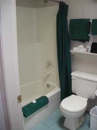 Holiday Park Resort: Bathroom