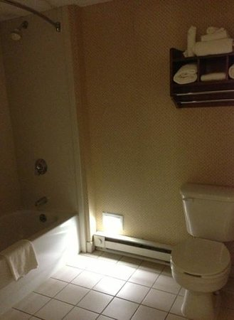 Hampton Inn Boston-Logan Airport: Convenient night light in bathroom.