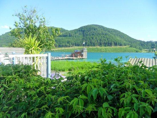 Amerika-Holzer am See: The lake