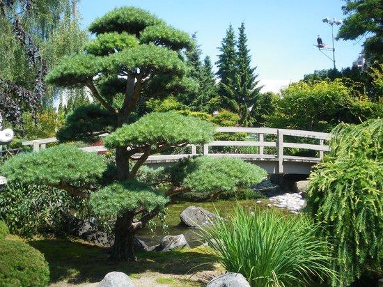 Kasugai Japanese Garden: Bridge