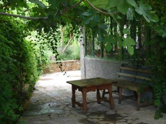 Casa Rural Dar Khizana : exterior y jardín