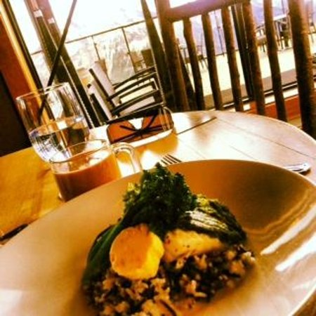 Eagle's Eye Restaurant - Kicking Horse Mountain Resort : B.C Halibut with a Sunflower Seed Pesto Crust served with Wild Rice & Citrus Butter - mmmm