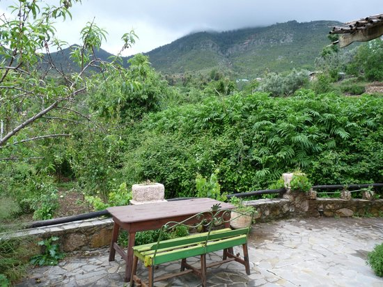 Casa Rural Dar Khizana : todo verde