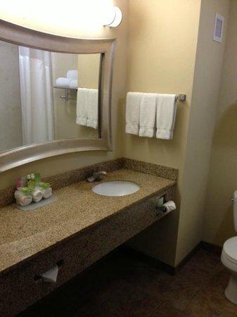 Holiday Inn Express Hotel & Suites Lexington Northeast: Bathroom