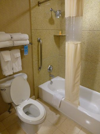 La Quinta Inn & Suites Ely: Shower