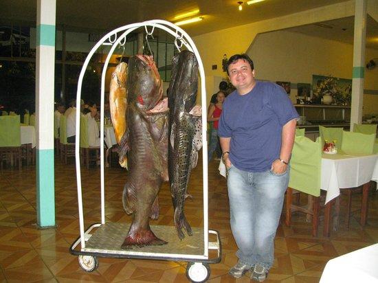 Restaurante Clube Maringa: Eu ao lado dos peixes.