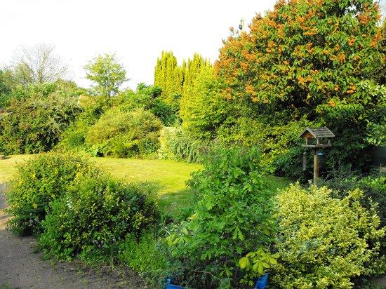 Mill Lane Bed & Breakfast: Garden Area