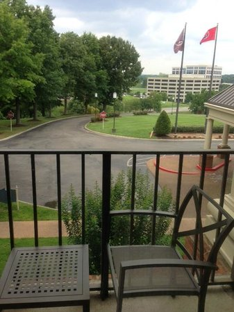 Sheraton Music City Hotel: View from room