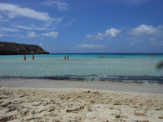 Agriturismo Resort Costa House: spiaggia isola dei conigli