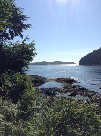 Duffin Cove Oceanfront Lodging: The view from our cabin balcony