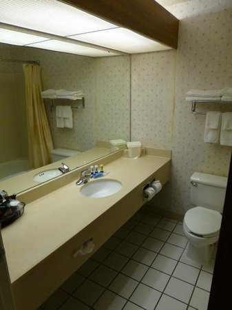 Fairfield Inn Boise: Bath