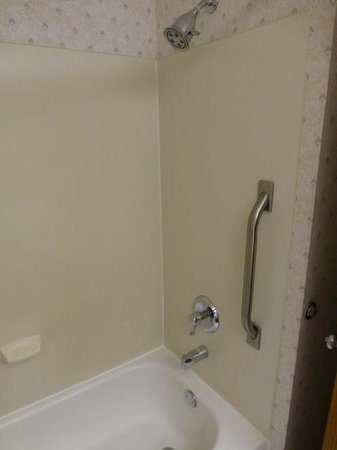 Fairfield Inn Boise: Shower