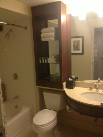 Hyatt Regency Boston Harbor: Room 821 Bathroom