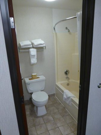 Hospitality Inn: Toilet and shower