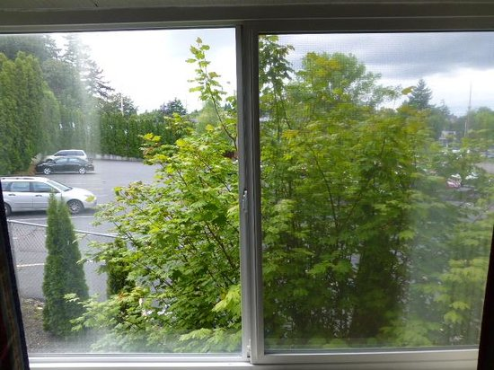 Hospitality Inn: Parking lot room view