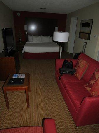 Residence Inn San Diego La Jolla: Residence Inn Room